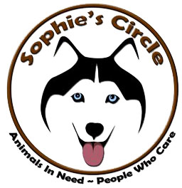 Sophie's Circle